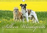 Silken Windsprite - Mit Merlin und Calisto durch´s Jahr 2019 (Wandkalender 2019 DIN A4 quer): Die seidigen Windhunde aus Amerika (Monatskalender, 14 Seiten ) (CALVENDO Tiere)