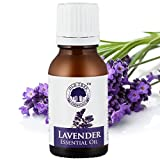 #3: Old Tree Pure Lavender Oil, 15ml