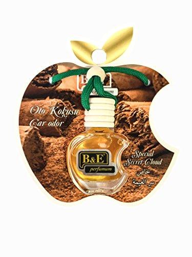 B&E Perfume Auto Lufterfrischer,Auto Duft,Auto Zubehör,Car fragrance, leichter Duft fürs Auto, Hängefläschchen im Fahrzeug, Raumduft, 12ml (Zimt/Special Secret Cloud) -