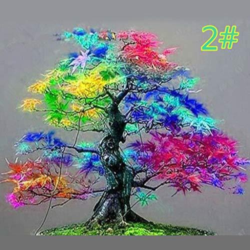 Junlinto, 20 Pz Giapponese Semi di Acero Bonsai DIY Pianta Vaso di Fiori Foglie Colorate Casa Creativa Casa Mini Giardinaggio Decor 7