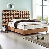 Luxus Boxspringbett braun Velour Libery XXL Design Hotelbett Doppelbett Taschenfederkern mit Topper (180 x 200 cm)