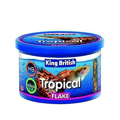 King British Tropical Flake Food 28 g