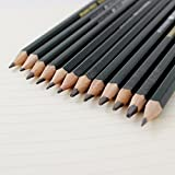 #2: PINDIA Set of 12 Professional Graphite Drawing & Sketching Pencils (2H-12B)