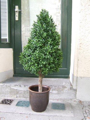 Licht & Grün Künstlicher Buchsbaum - Pyramide, Spitzenqualität,für den geschützten Außenbereich 1,15m 40cm Durchmesser