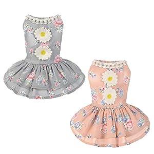Angelof Chien chat Bow Tutu robe dentelle jupe PET chiot princesse costume habillement