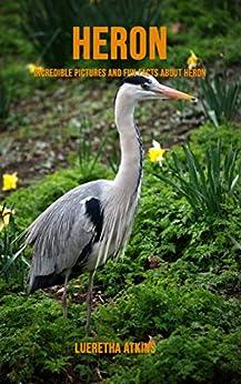 Heron: Incredible Pictures and Fun Facts about Heron PDF Descarga gratuita