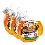 SONAX 3X 03874000 ScheibenReiniger Konzentrat Tropical Sun 3L