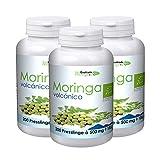 300 Gramm Bio Moringa Volcánica Bio Presslinge vegan frisch aus Teneriffa - Moringa oleifera 3 x 200 Presslinge Rohkost Sparset