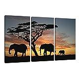 Bild & Kunstdruck der deutschen Marke Visario 160 x 90 cm 1066 Bilder auf Leinwand Kunstdrucke Afrika Elefanten Wandbild