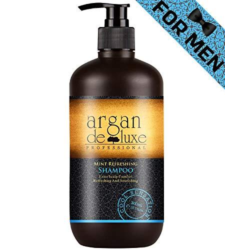 Arganöl Shampoo Herren in Friseur-Qualität for Men ✔ Starkes Pflege Shampoo Männer Minze Menthol Fresh ✔ Argan DeLuxe 300ml -
