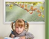 Fenstersticker Einhörnchen jubeln Kinderzimmer Einhörnchen Hazel Nut Familie Fenstersticker Fensterfolie Fenstertattoo Fensterbild Fenster-Deko Fensteraufkleber Fensterdekoration Glas-Sticker Größe: 45cm x 118cm