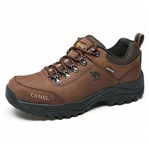Zapatos de Senderismo al Aire Libre Zapatos de Escalada Zapatillas de montaña Ideal para Deportes Caminar Caza atlético Adecuado para Damas de Hombres (UK9=EU43=10.43IN Feet Length, Coffee)
