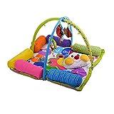 K's Kids - Manta De Suelo Con Cojines Y Transformable Con Arco Flexible KA10534