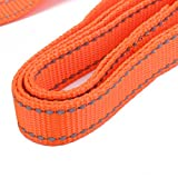 Sharplace Reflektierende Hundeleine Hunde Trainingsleine Haustier Welpen Leine 1,2 Meter - Orange, XL