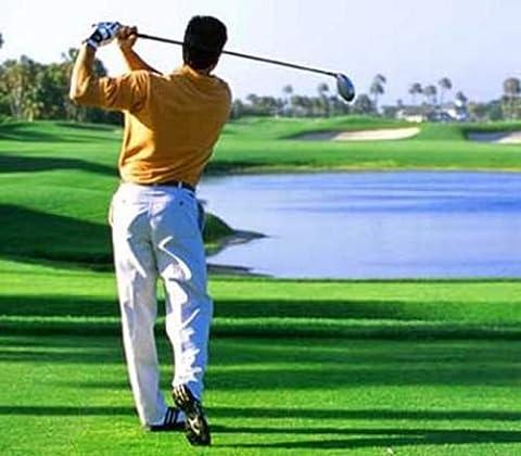 Learn Golf The One Arm Swing Secret DVD