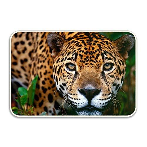 lijied Custom Home Cheetah Decorative Floor Mat Kitchen,Bathroom Doormat 1 Front Door mats Entry mat