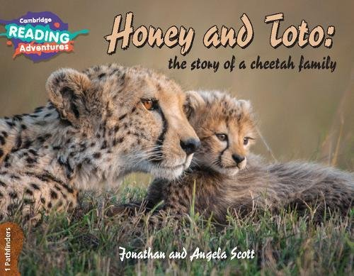 Honey and Toto : the story of a cheetah family. 1