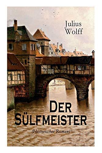 storischer Roman): Eine Geschichte aus dem mittelalterlichen Lüneburg ()