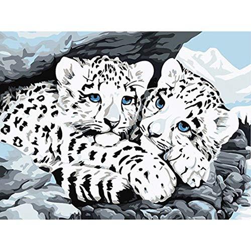 Cuadro Tigres Animales Diy Pintura Por Números Kits