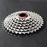 CYSKY Cassetta pignoni 9 velocità 11-40T Cassetta MTB 9 velocità adatta per Mountain Bike, bici da strada, MTB, BMX, SRAM, Shimano