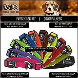 Hundehalsband Halsung aus Air-Mesh verschiedene Farben und Größen XS, S, M, L, XL: verstellbar, leicht, atmungsaktive, gepolstert, luftdurchlässig, soft, weich, stark, stabil, farbig, für große und kleine Hunde (Leine und Geschirr separat erhältlich) (Farbe Schwarz, Größe XS – 1,5 x 21-30 cm) - 5