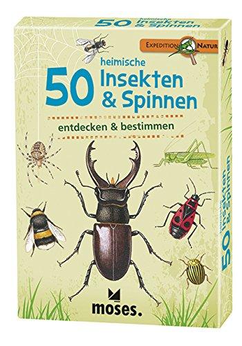 expedition-natur-50-heimische-insekten-spinnen-entdecken-bestimmen