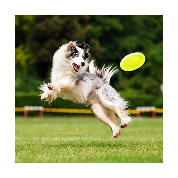 LaRoo Dog Flying Disc Dog Frisbee ABS Material Floatable Dog Toys Pet Frisbee for Puppies, Small, Medium and Large Dogs 6