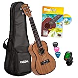 CASCHA Premium Mahagoni Konzert Ukulele Set, kleine Hawaii Gitarre mit Lehrbuch, Stimmgerät, Aquila-Saiten, Tasche, 3 Plektren