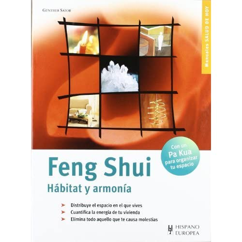 Feng Shui by Gunther Sator (2002-06-30)