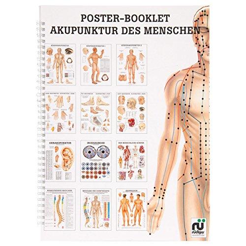Akupunkturtafel (Sport-Tec Akupunktur des Menschen Mini-Poster Booklet Anatomie 34x24 cm, 12 Poster)