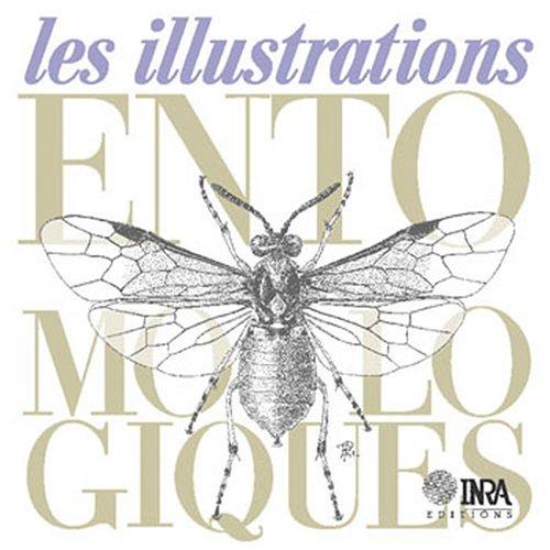 Illustrations entomologiques (les)