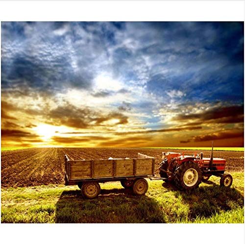 QAZZSF Malen Nach Zahlen Für Erwachsene Und Kinder DIY Ölgemälde Geschenk-Kits Vorgedruckte Leinwand Kunst Home Decoration - Sunset Farm 40X50CM - Farm Leinwand Kunst