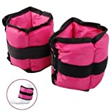 (500Grams) (250 Grams each) Pink Ankle weights