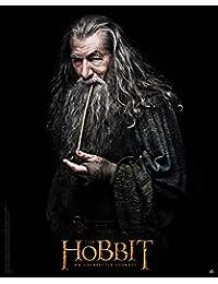 Póster de película, el hobbit, Gandalf, 40x 50cm
