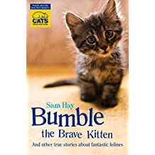Bumble the Brave Kitten: In association with Cats Protection