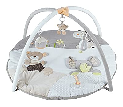 New MiniDream Baby Musical Activity Gym Suitable from Birth