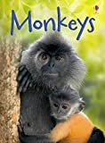 Monkeys (Beginners Series)