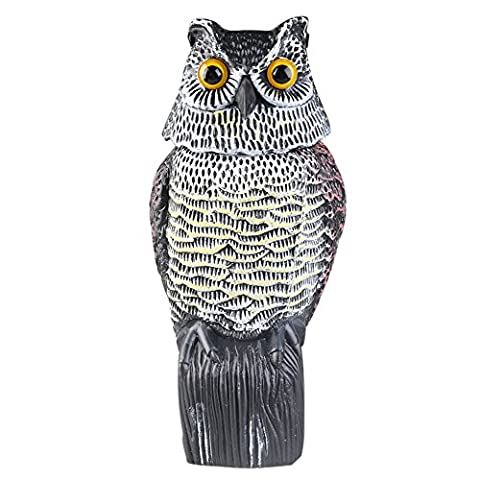 Maelu Decoy with Rotating Head Protection Garden Owl Shaped Realistic Scarecrow – Drive The Mouse & Other Small Mammals