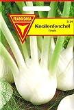 Knollenfenchel, Finale, ca. 150 Samen