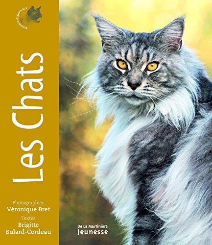 Les chats - Portraits d'animaux