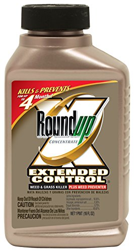 roundup-5720010-extended-control-weed-and-grass-killer-16ounce