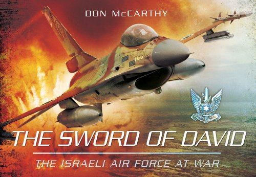 The Sword of David: The Israeli Air Force at War por Donald J. McCarthy