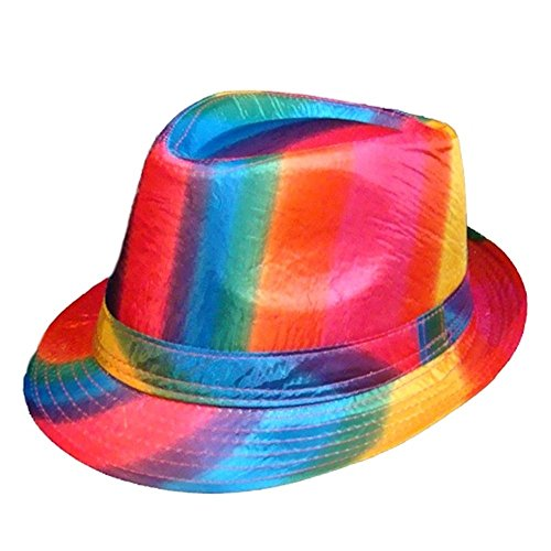 Gay Rainbow Sisters pour Homme Gay Pride Chapeau Fedora - Multicolore - Taille Unique