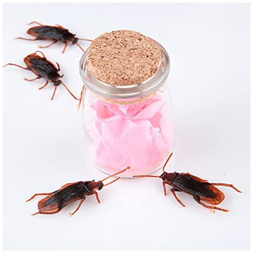 Westeng-1Pc-Fake-Roaches-Cockroach-Streich-Neuheit-Roaches-Bugs-Look-Real-fr-Home-Party-Dekoration