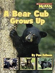 A Bear Cub Grows Up