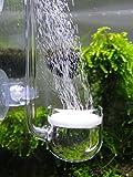 Musik Glas CO2 Diffusor für Aquarium Pflanze (Φ30mm)