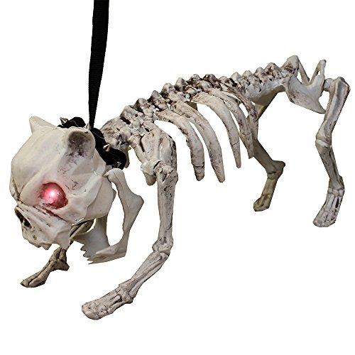 Bewegliche Hund Skelett Halloween Prop mit Licht bis Augen und (Halloween Skelett Prop Hund)