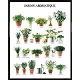 Herbes aromatique tableaux posters et arts for Cadre decoratif pour cuisine