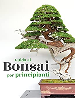Guida Ai Bonsai Per Principianti Italian Edition Ebook Bonsai