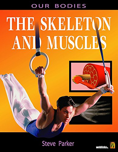 Muscles and Skeleton PDF Books